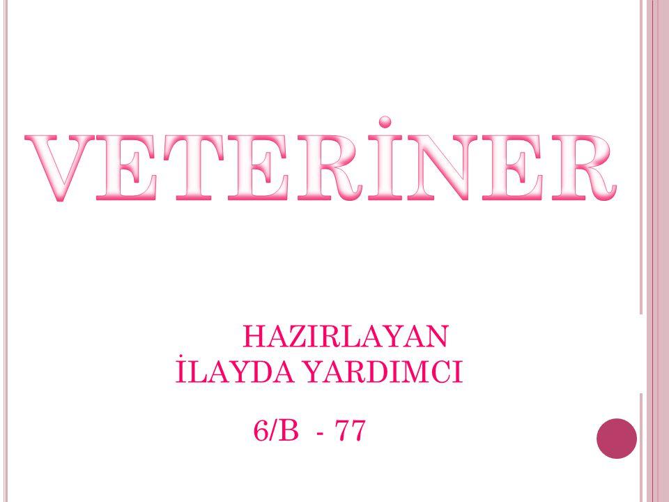 HAZIRLAYAN İLAYDA YARDIMCI 6/B - 77