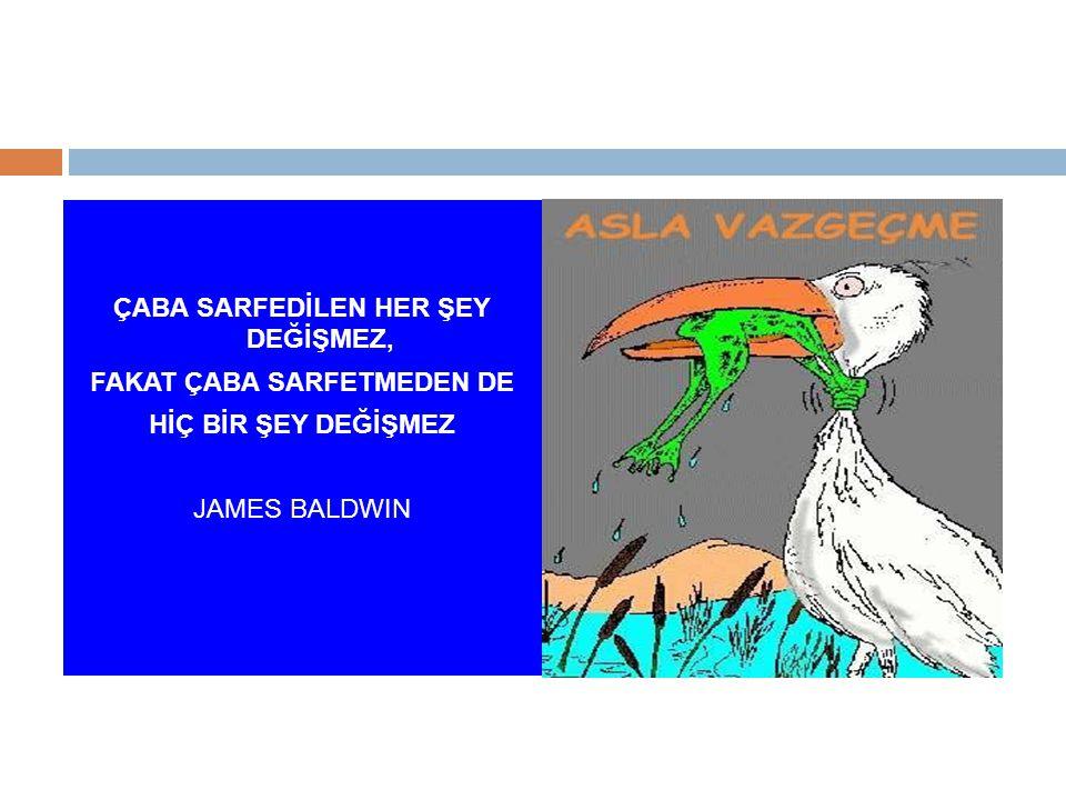 ÇABA SARFEDİLEN HER ŞEY DEĞİŞMEZ, FAKAT ÇABA SARFETMEDEN DE HİÇ BİR ŞEY DEĞİŞMEZ JAMES BALDWIN