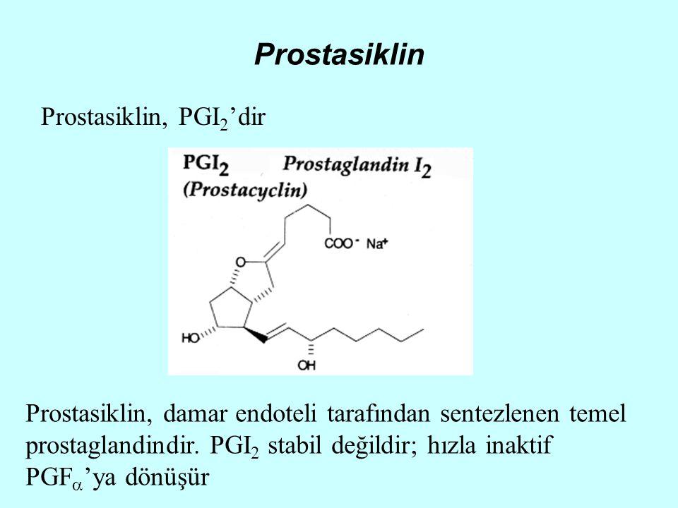 Prostasiklin Prostasiklin, PGI 2 'dir Prostasiklin, damar endoteli tarafından sentezlenen temel prostaglandindir. PGI 2 stabil değildir; hızla inaktif