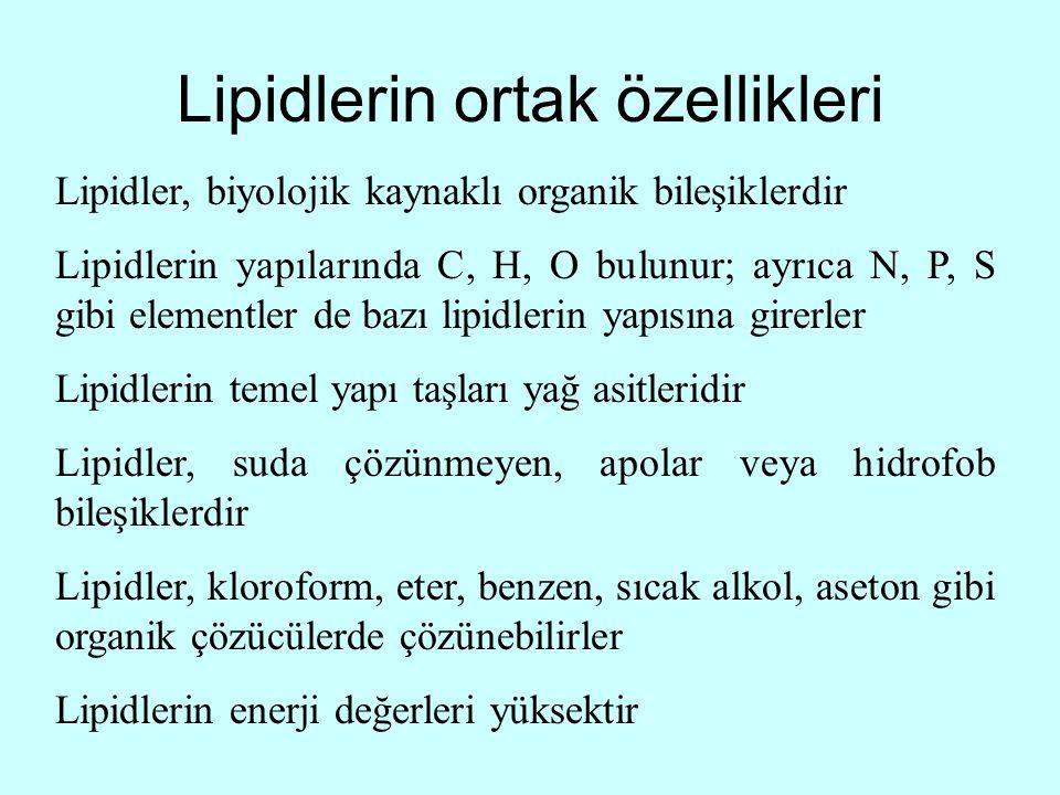 Lipidlerin ortak özellikleri Lipidler, biyolojik kaynaklı organik bileşiklerdir Lipidlerin yapılarında C, H, O bulunur; ayrıca N, P, S gibi elementler