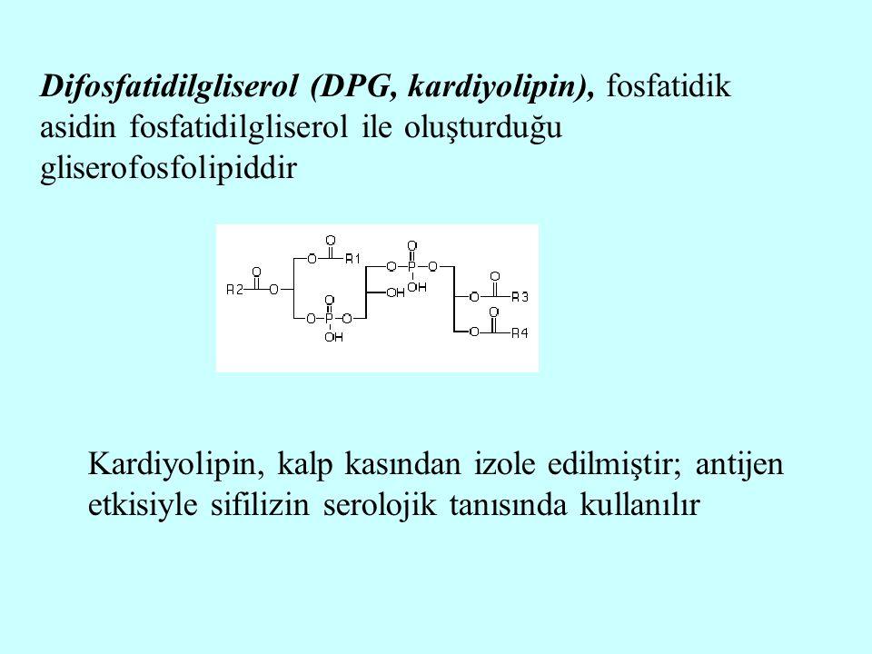 Difosfatidilgliserol (DPG, kardiyolipin), fosfatidik asidin fosfatidilgliserol ile oluşturduğu gliserofosfolipiddir Kardiyolipin, kalp kasından izole