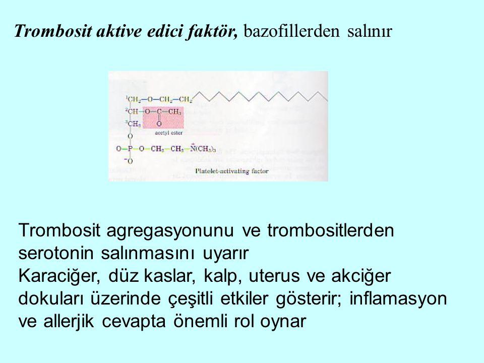 Trombosit aktive edici faktör, bazofillerden salınır Trombosit agregasyonunu ve trombositlerden serotonin salınmasını uyarır Karaciğer, düz kaslar, ka