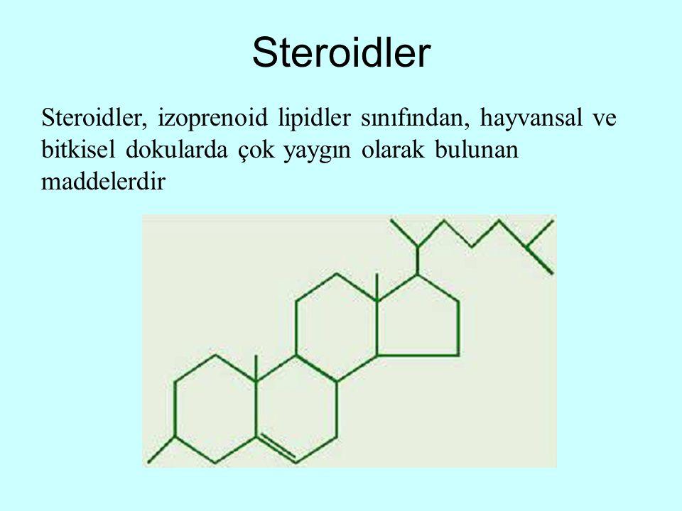 Steroidler Steroidler, izoprenoid lipidler sınıfından, hayvansal ve bitkisel dokularda çok yaygın olarak bulunan maddelerdir
