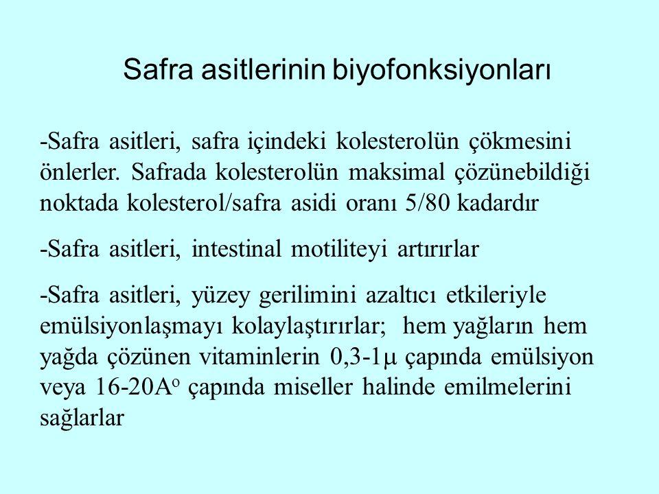 Safra asitlerinin biyofonksiyonları -Safra asitleri, safra içindeki kolesterolün çökmesini önlerler. Safrada kolesterolün maksimal çözünebildiği nokta
