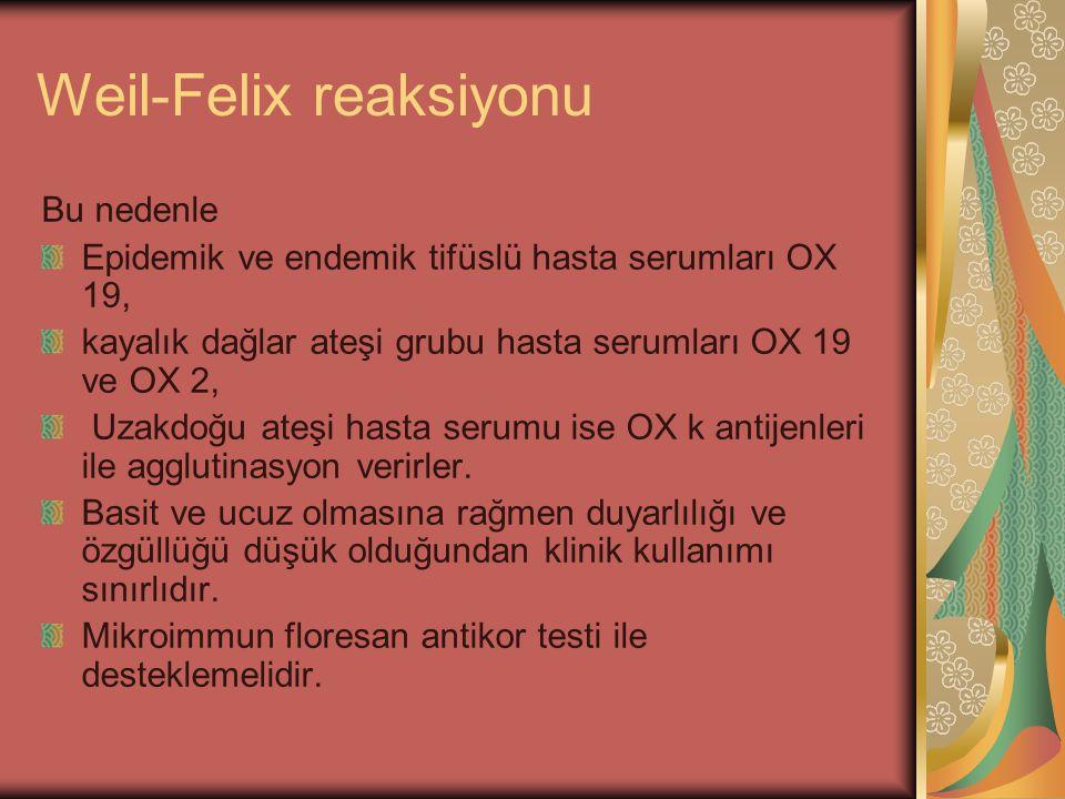 Weil-Felix reaksiyonu Bu nedenle Epidemik ve endemik tifüslü hasta serumları OX 19, kayalık dağlar ateşi grubu hasta serumları OX 19 ve OX 2, Uzakdoğu