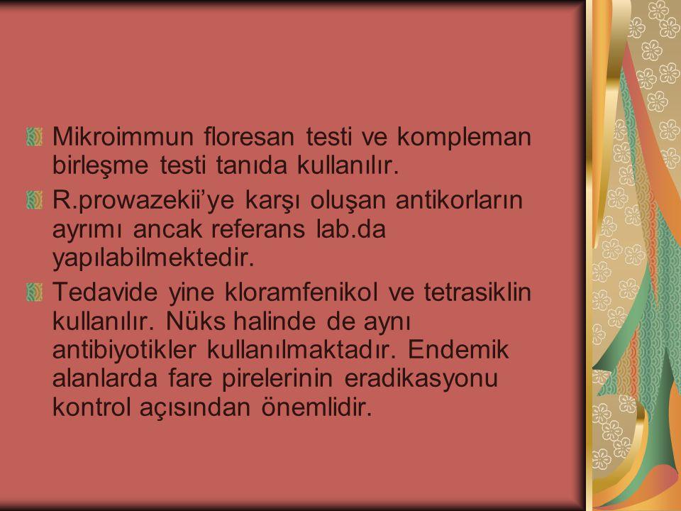Mikroimmun floresan testi ve kompleman birleşme testi tanıda kullanılır. R.prowazekii'ye karşı oluşan antikorların ayrımı ancak referans lab.da yapıla