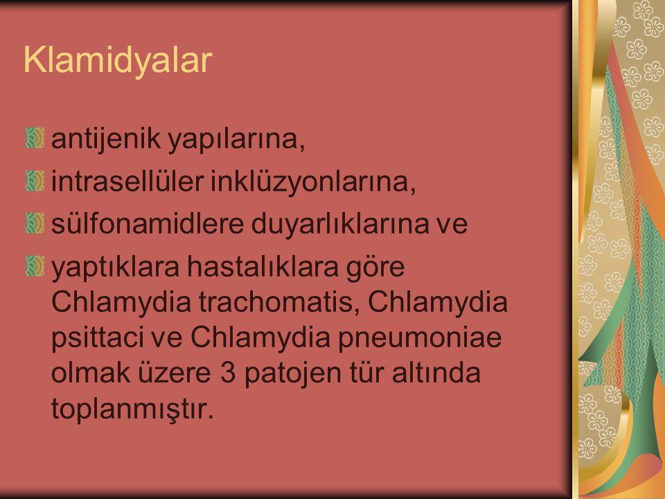 Klamidyalar antijenik yapılarına, intrasellüler inklüzyonlarına, sülfonamidlere duyarlıklarına ve yaptıklara hastalıklara göre Chlamydia trachomatis,