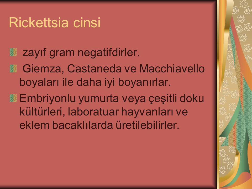 Rickettsia cinsi zayıf gram negatifdirler. Giemza, Castaneda ve Macchiavello boyaları ile daha iyi boyanırlar. Embriyonlu yumurta veya çeşitli doku kü
