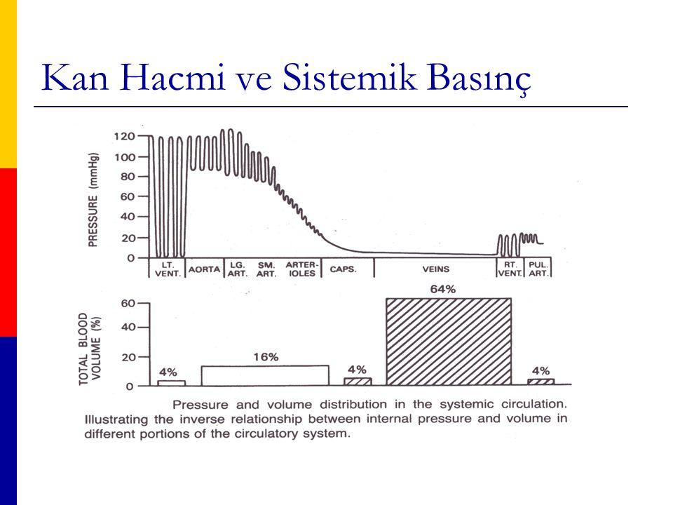 Kan Hacmi ve Sistemik Basınç