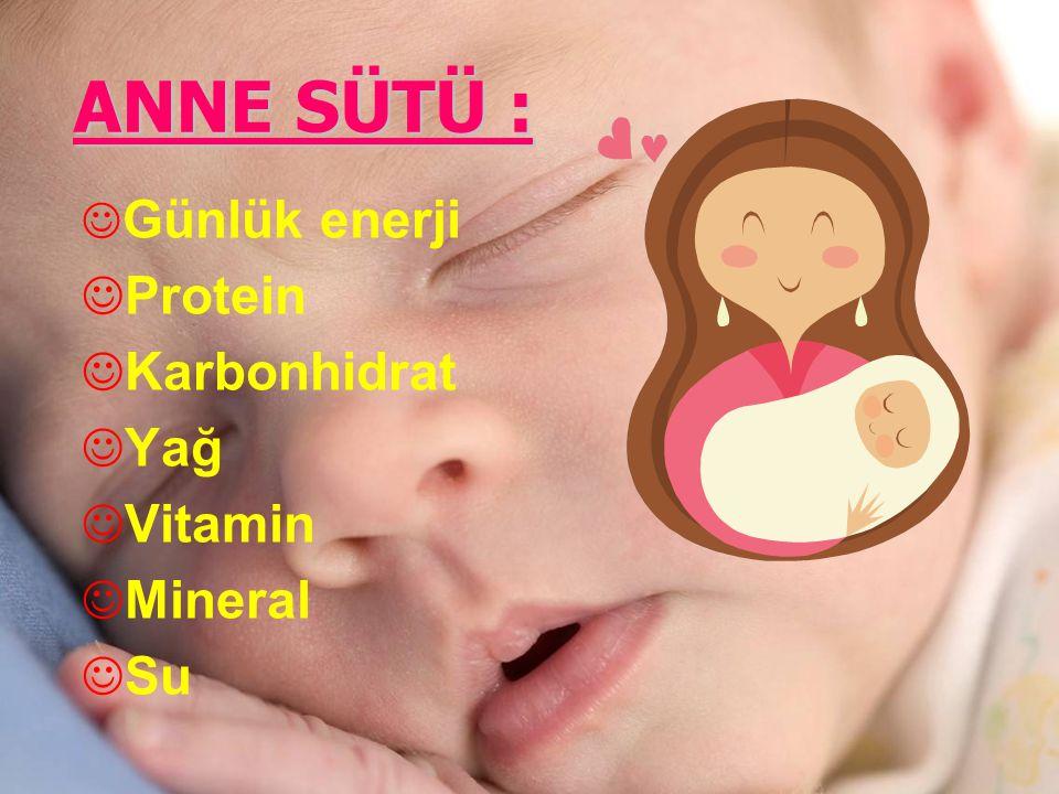 ANNE SÜTÜ : J Günlük enerji J Protein J Karbonhidrat J Yağ J Vitamin J Mineral J Su
