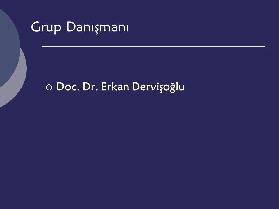 Grup Danışmanı  Doc. Dr. Erkan Dervişoğlu