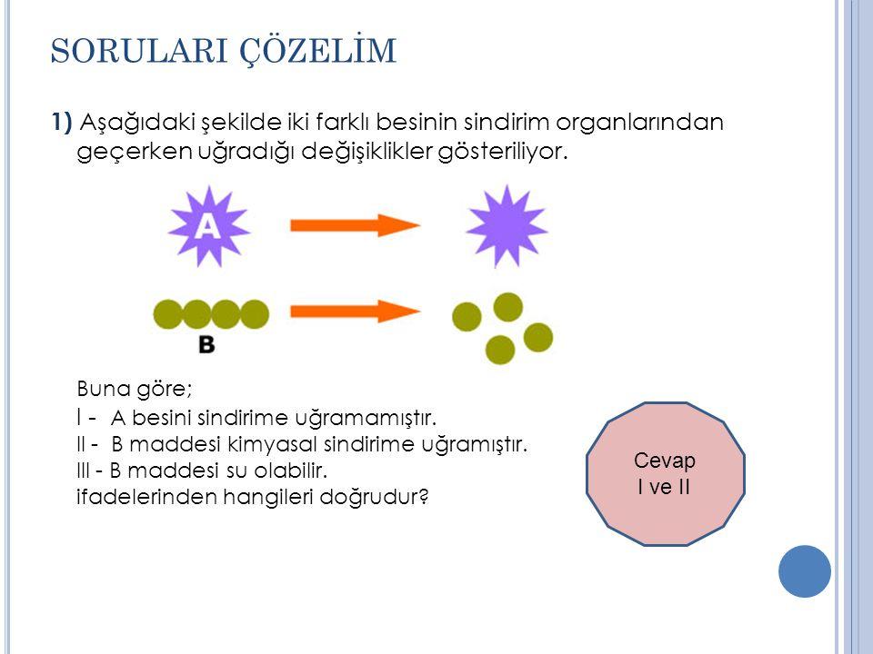 SORULARI ÇÖZELİM 1) Aşağıdaki şekilde iki farklı besinin sindirim organlarından geçerken uğradığı değişiklikler gösteriliyor.