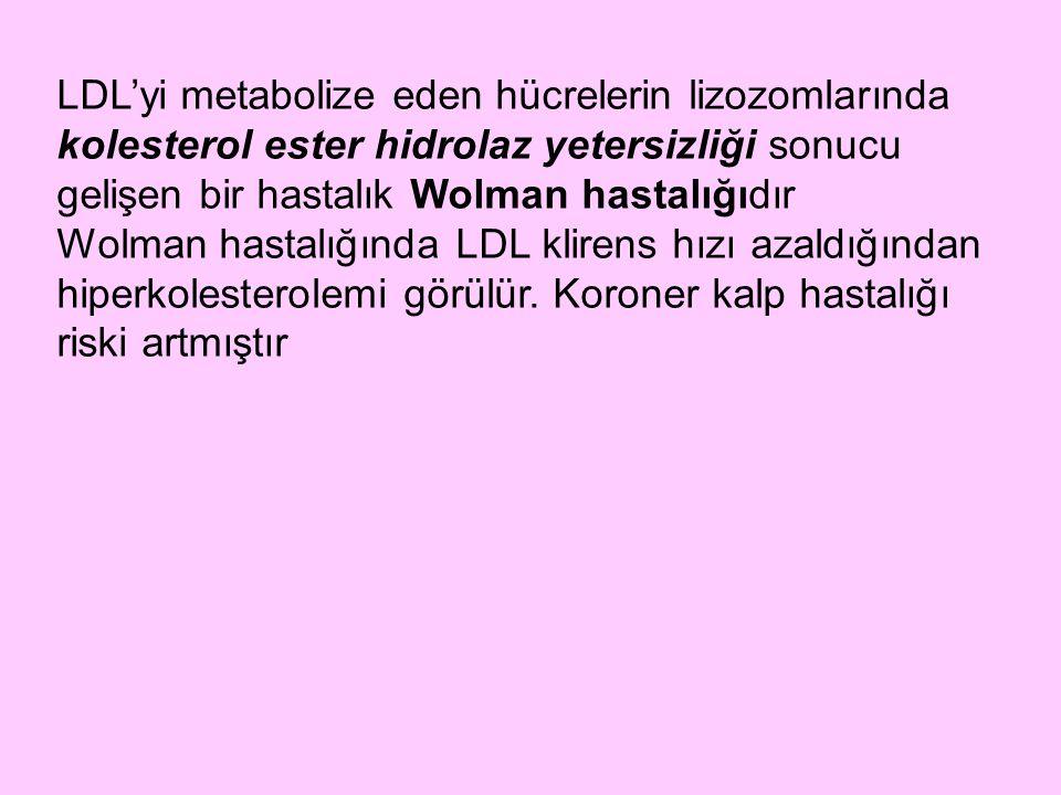LDL'yi metabolize eden hücrelerin lizozomlarında kolesterol ester hidrolaz yetersizliği sonucu gelişen bir hastalık Wolman hastalığıdır Wolman hastalı