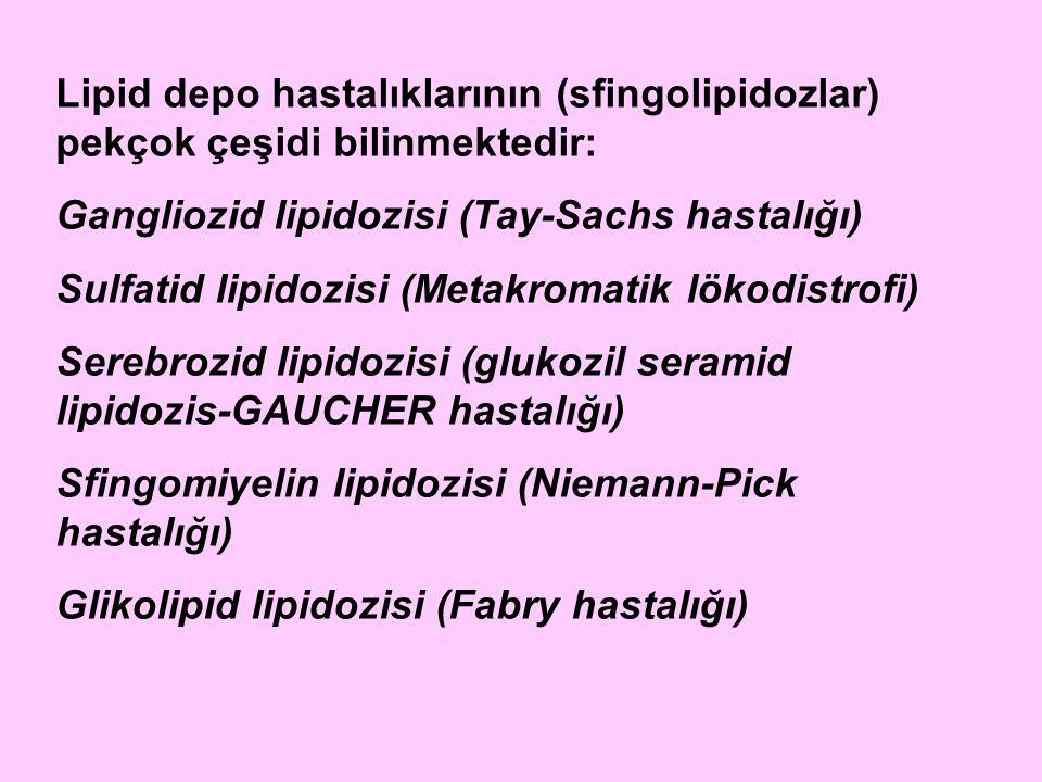Lipid depo hastalıklarının (sfingolipidozlar) pekçok çeşidi bilinmektedir: Gangliozid lipidozisi (Tay-Sachs hastalığı) Sulfatid lipidozisi (Metakromat