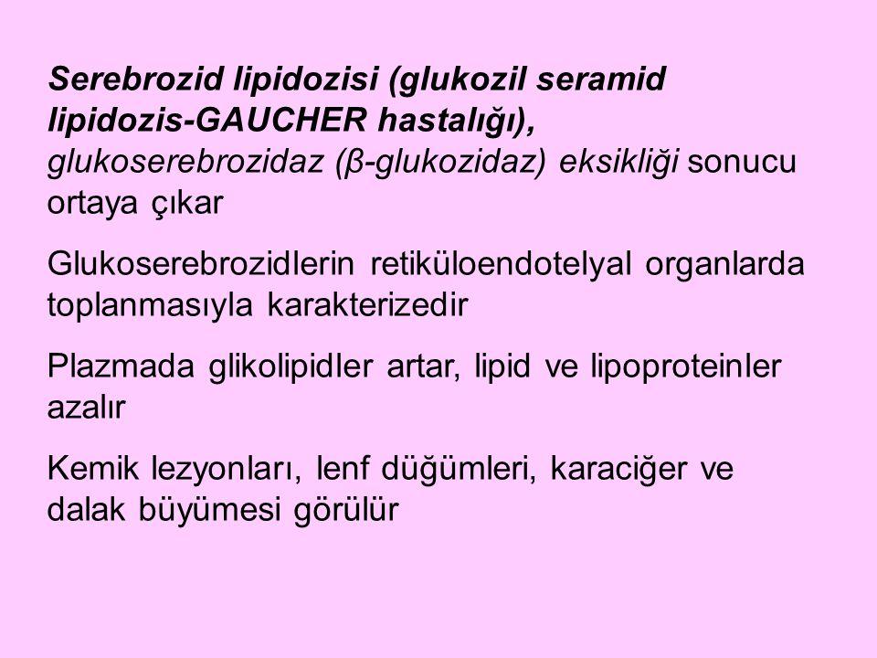 Serebrozid lipidozisi (glukozil seramid lipidozis-GAUCHER hastalığı), glukoserebrozidaz (β-glukozidaz) eksikliği sonucu ortaya çıkar Glukoserebrozidle
