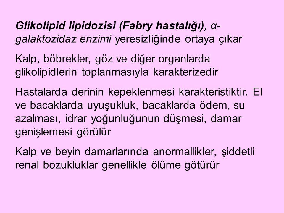 Glikolipid lipidozisi (Fabry hastalığı), α- galaktozidaz enzimi yeresizliğinde ortaya çıkar Kalp, böbrekler, göz ve diğer organlarda glikolipidlerin t