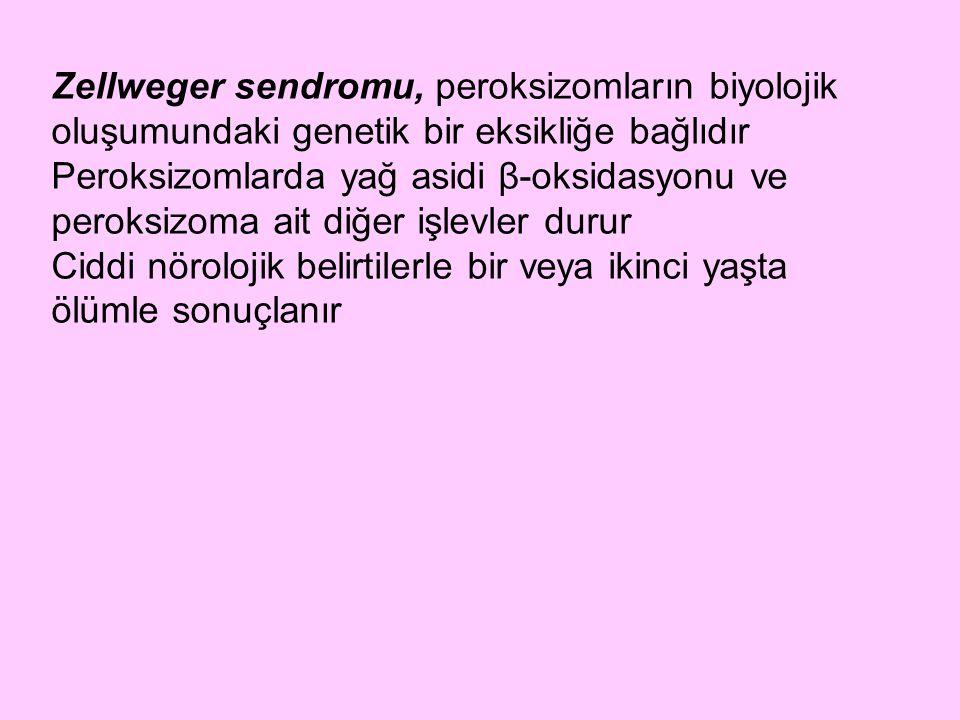 Zellweger sendromu, peroksizomların biyolojik oluşumundaki genetik bir eksikliğe bağlıdır Peroksizomlarda yağ asidi β-oksidasyonu ve peroksizoma ait d