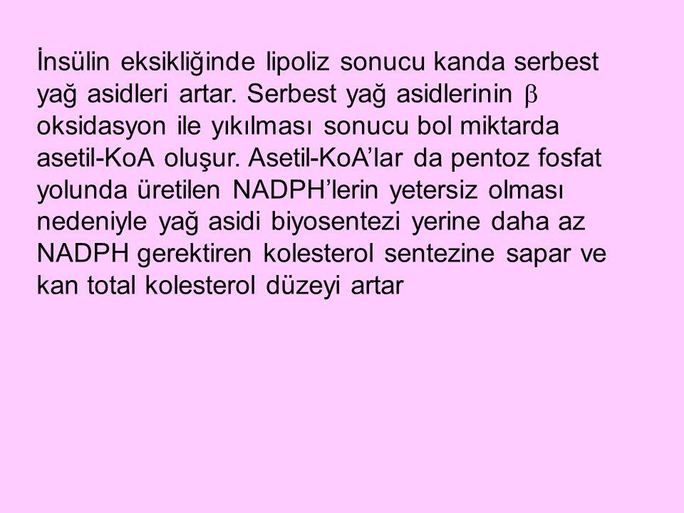 Tip I hiperlipoproteinemi: Lipoprotein lipaz eksikliğine bağlı olduğu kabul edilir.