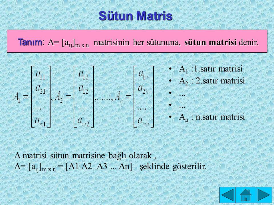 B 1 = [a 11 a 12...a 1n ] (1.satır matrisi) B 2 = [a 21 a 22...