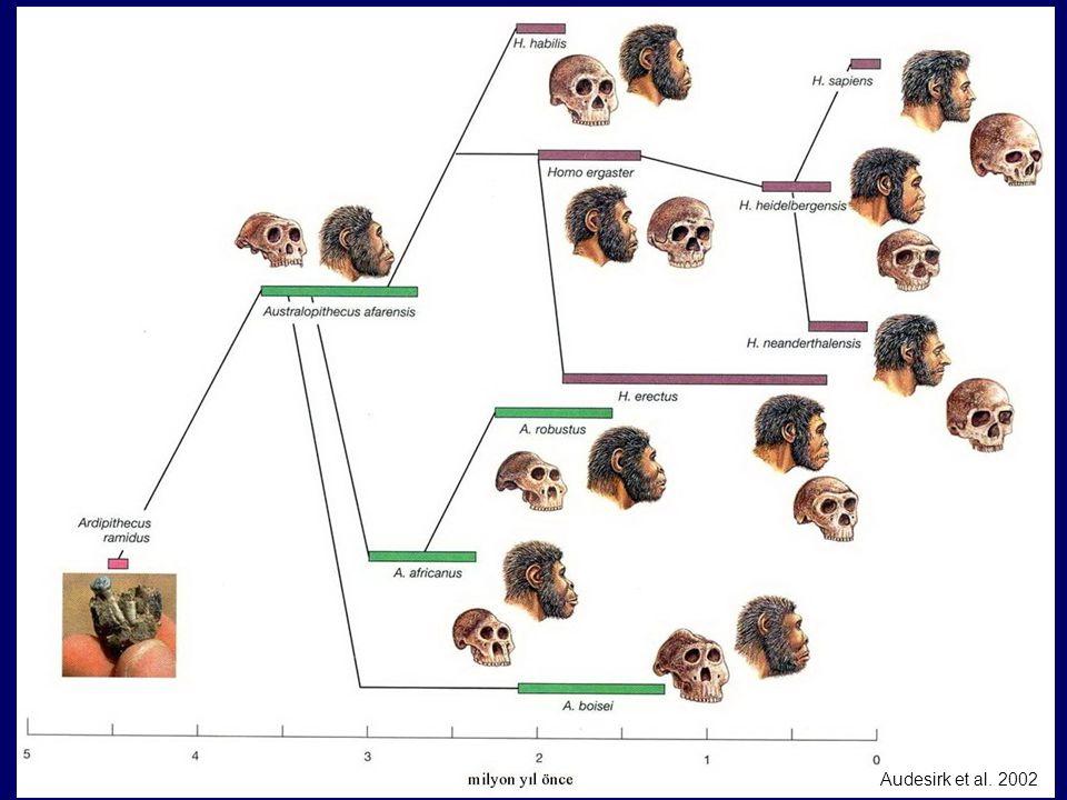 Audesirk et al. 2002