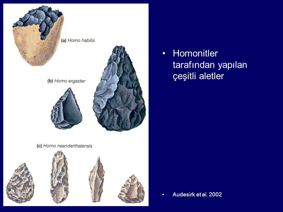 Homonitler tarafından yapılan çeşitli aletler Audesirk et al. 2002