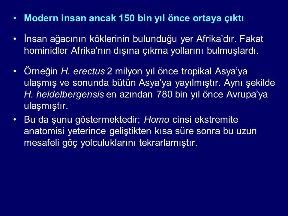 Modern insan ancak 150 bin yıl önce ortaya çıktı İnsan ağacının köklerinin bulunduğu yer Afrika'dır. Fakat hominidler Afrika'nın dışına çıkma yolların