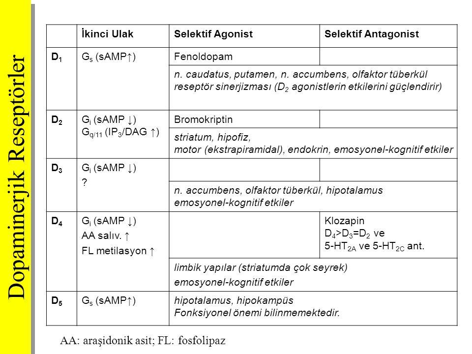 İkinci UlakSelektif AgonistSelektif Antagonist D1D1 G s (sAMP↑)Fenoldopam n. caudatus, putamen, n. accumbens, olfaktor tüberkül reseptör sinerjizması