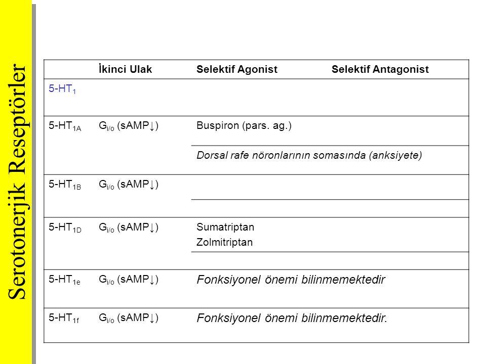 İkinci UlakSelektif AgonistSelektif Antagonist 5-HT 1 5-HT 1A G i/o (sAMP↓)Buspiron (pars. ag.) Dorsal rafe nöronlarının somasında (anksiyete) 5-HT 1B