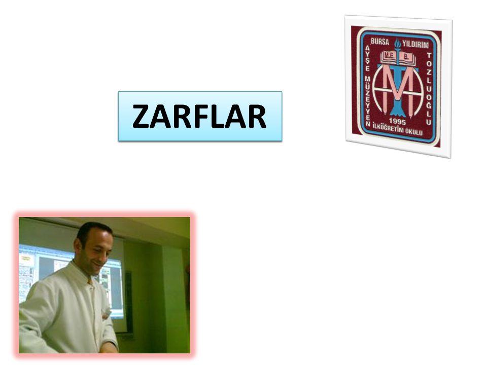 ADVERBS ZARFLAR