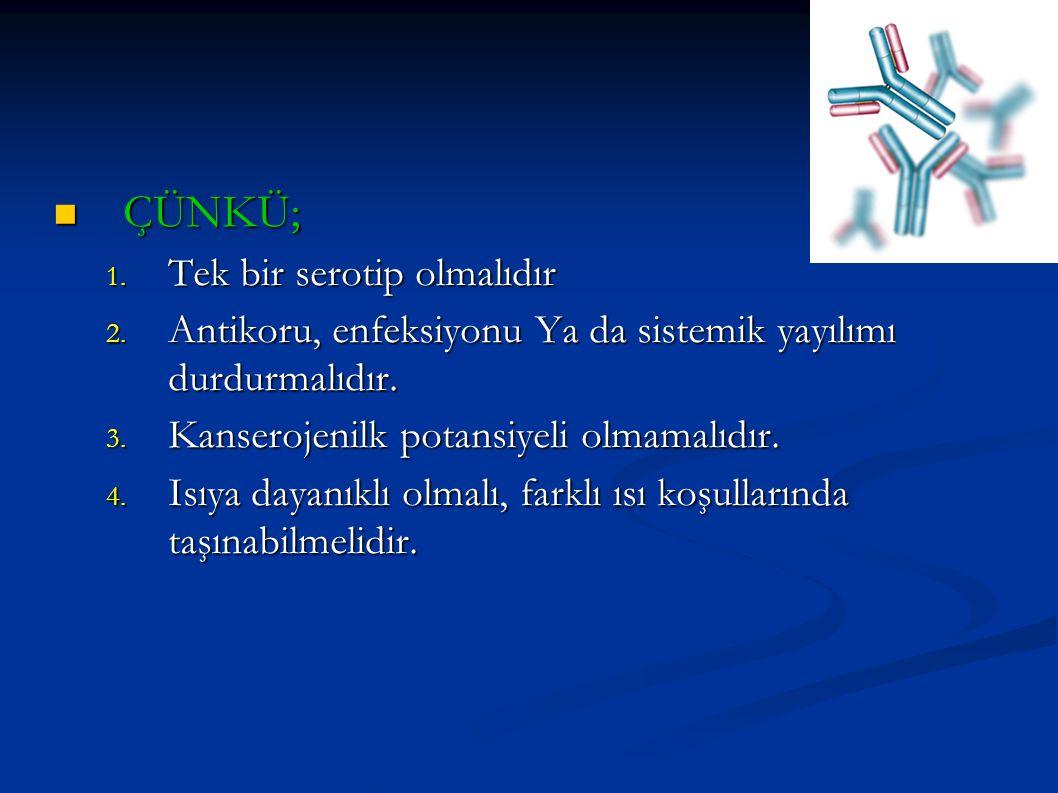 ÇÜNKÜ; ÇÜNKÜ; 1. Tek bir serotip olmalıdır 2. Antikoru, enfeksiyonu Ya da sistemik yayılımı durdurmalıdır. 3. Kanserojenilk potansiyeli olmamalıdır. 4