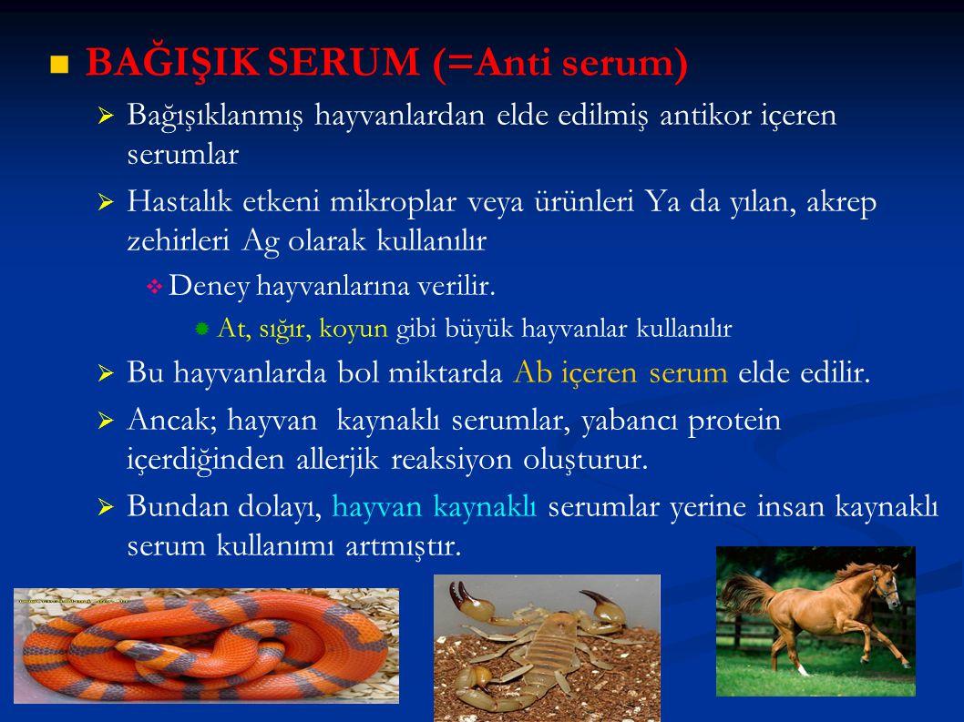 BAĞIŞIK SERUM (=Anti serum)   Bağışıklanmış hayvanlardan elde edilmiş antikor içeren serumlar   Hastalık etkeni mikroplar veya ürünleri Ya da yıla