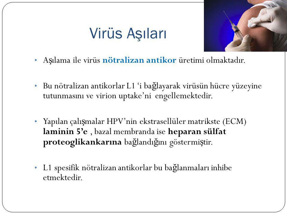 Virüs Aşıları A ş ılama ile virüs nötralizan antikor üretimi olmaktadır. Bu nötralizan antikorlar L1 'i ba ğ layarak virüsün hücre yüzeyine tutunmasın