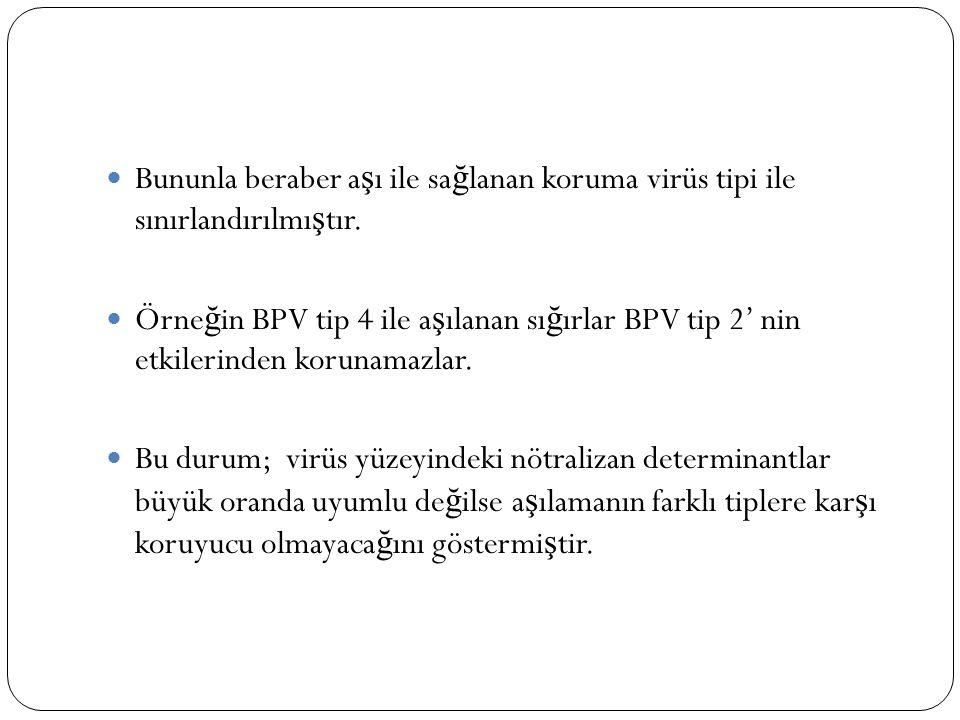 Bununla beraber a ş ı ile sa ğ lanan koruma virüs tipi ile sınırlandırılmı ş tır. Örne ğ in BPV tip 4 ile a ş ılanan sı ğ ırlar BPV tip 2' nin etkiler