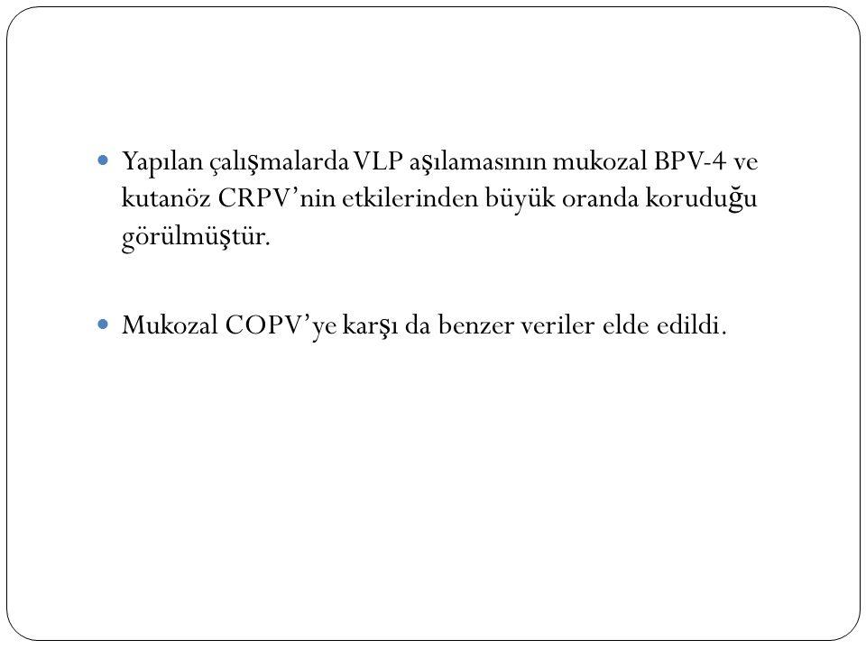 Yapılan çalı ş malarda VLP a ş ılamasının mukozal BPV-4 ve kutanöz CRPV'nin etkilerinden büyük oranda korudu ğ u görülmü ş tür. Mukozal COPV'ye kar ş