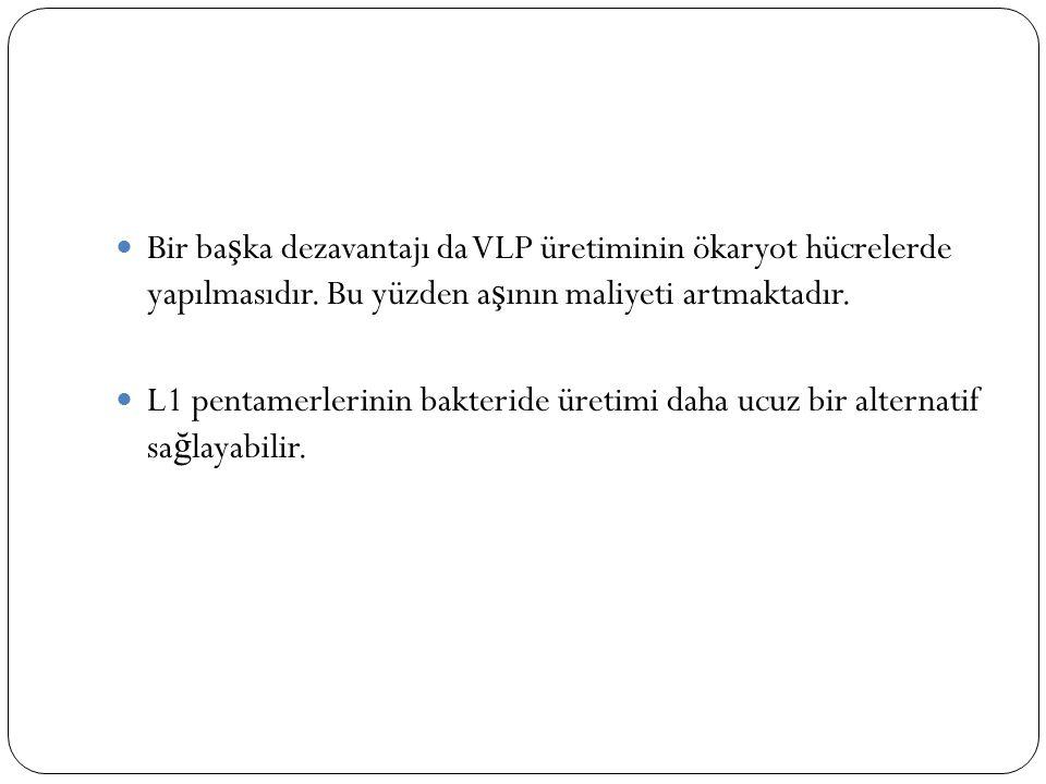 Bir ba ş ka dezavantajı da VLP üretiminin ökaryot hücrelerde yapılmasıdır.