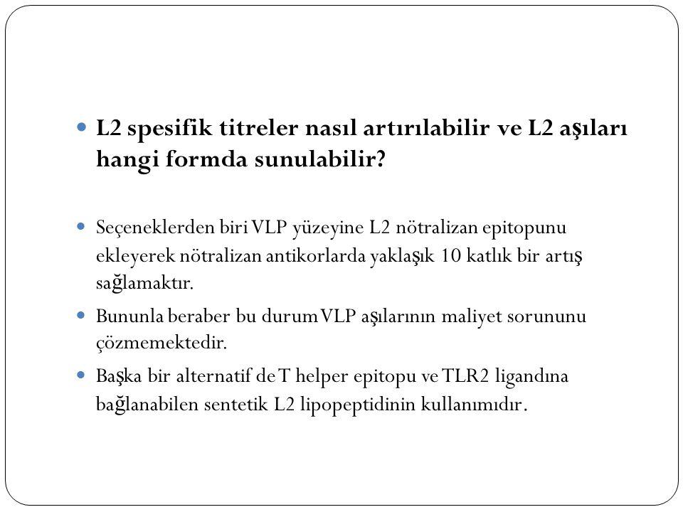 L2 spesifik titreler nasıl artırılabilir ve L2 a ş ıları hangi formda sunulabilir? Seçeneklerden biri VLP yüzeyine L2 nötralizan epitopunu ekleyerek n