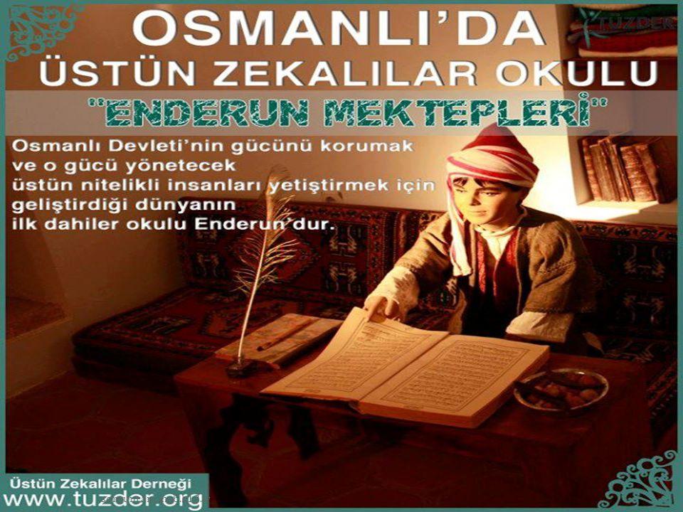 » Türkiye'de özel yetenekli bireylere destek eğitim vermek amacıyla açılan en yaygın kurum Bilim ve Sanat Merkezleri'dir.