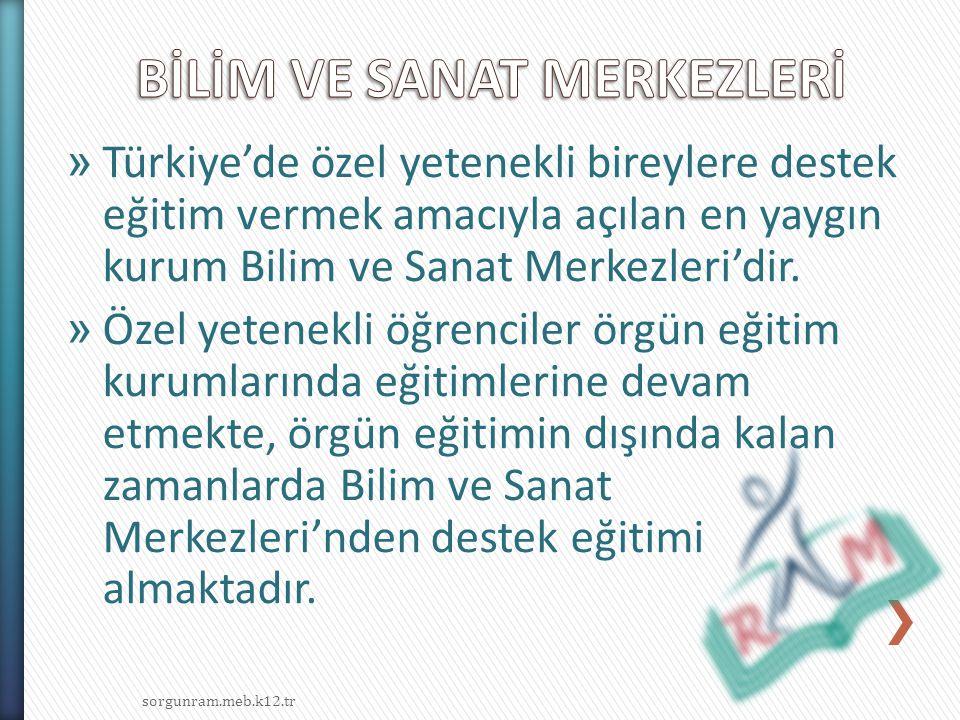 » Türkiye'de özel yetenekli bireylere destek eğitim vermek amacıyla açılan en yaygın kurum Bilim ve Sanat Merkezleri'dir. » Özel yetenekli öğrenciler