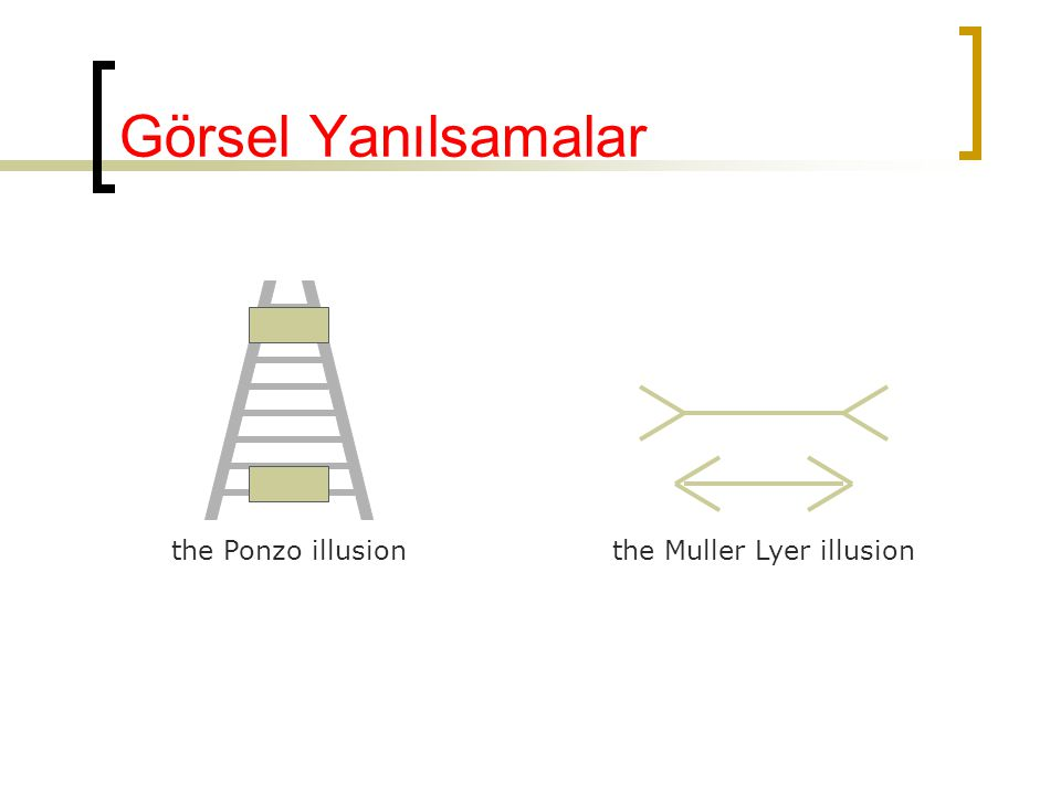 Görsel Yanılsamalar the Ponzo illusionthe Muller Lyer illusion