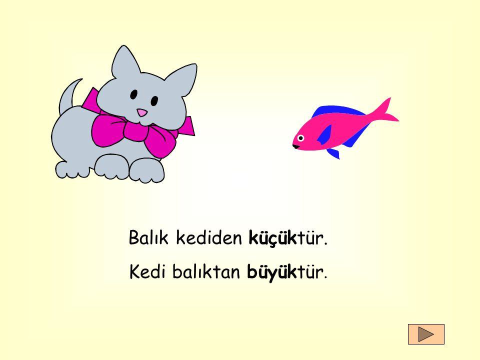Balık kediden küçüktür. Kedi balıktan büyüktür.