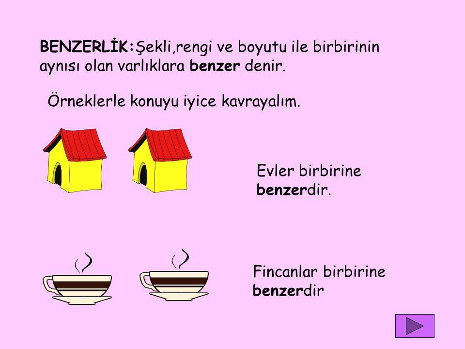 BENZERLİK:Şekli,rengi ve boyutu ile birbirinin aynısı olan varlıklara benzer denir. Örneklerle konuyu iyice kavrayalım. Evler birbirine benzerdir. Fin