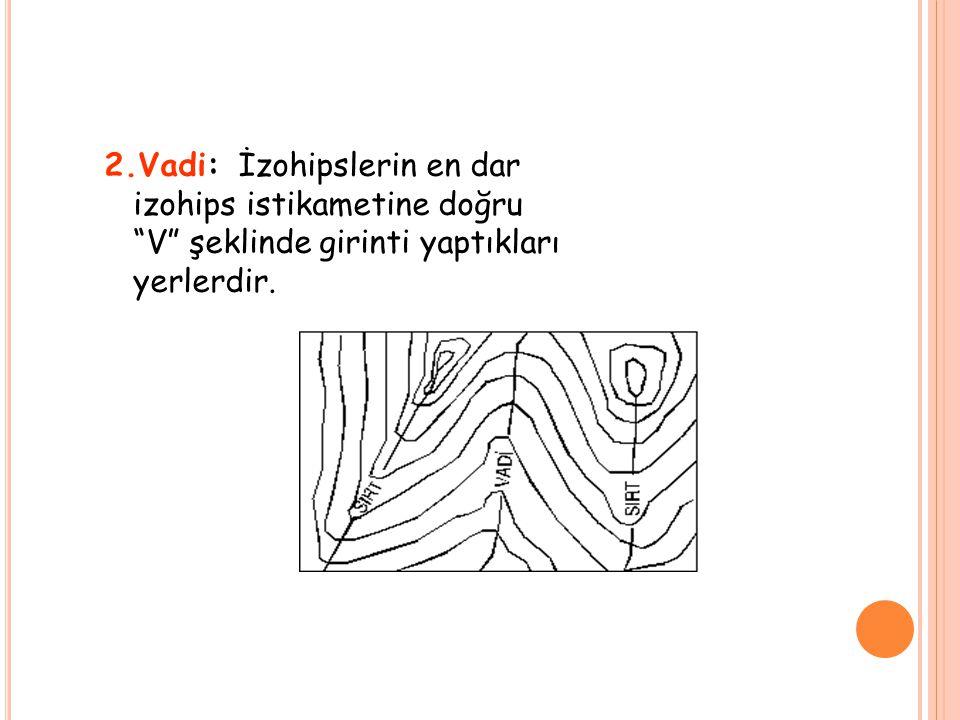 """2.Vadi: İzohipslerin en dar izohips istikametine doğru """"V"""" şeklinde girinti yaptıkları yerlerdir."""