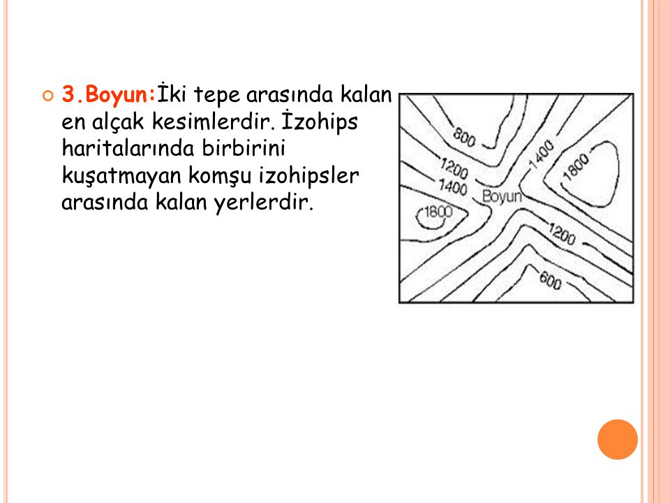 3.Boyun:İki tepe arasında kalan en alçak kesimlerdir. İzohips haritalarında birbirini kuşatmayan komşu izohipsler arasında kalan yerlerdir.