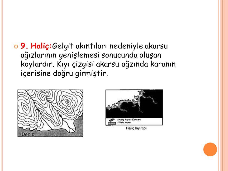 9.Haliç:Gelgit akıntıları nedeniyle akarsu ağızlarının genişlemesi sonucunda oluşan koylardır.