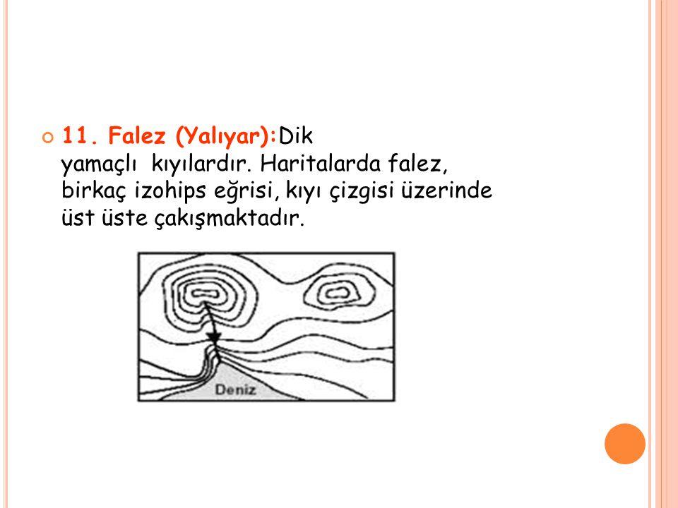 11. Falez (Yalıyar):Dik yamaçlı kıyılardır. Haritalarda falez, birkaç izohips eğrisi, kıyı çizgisi üzerinde üst üste çakışmaktadır.