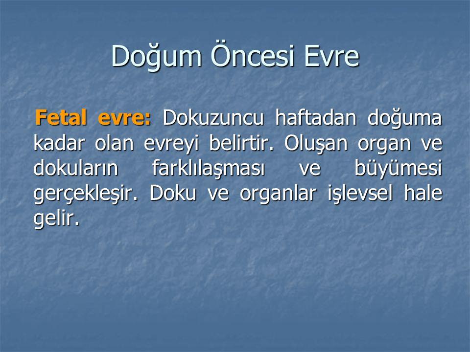 Doğum Öncesi Evre Fetal evre: Dokuzuncu haftadan doğuma kadar olan evreyi belirtir. Oluşan organ ve dokuların farklılaşması ve büyümesi gerçekleşir. D