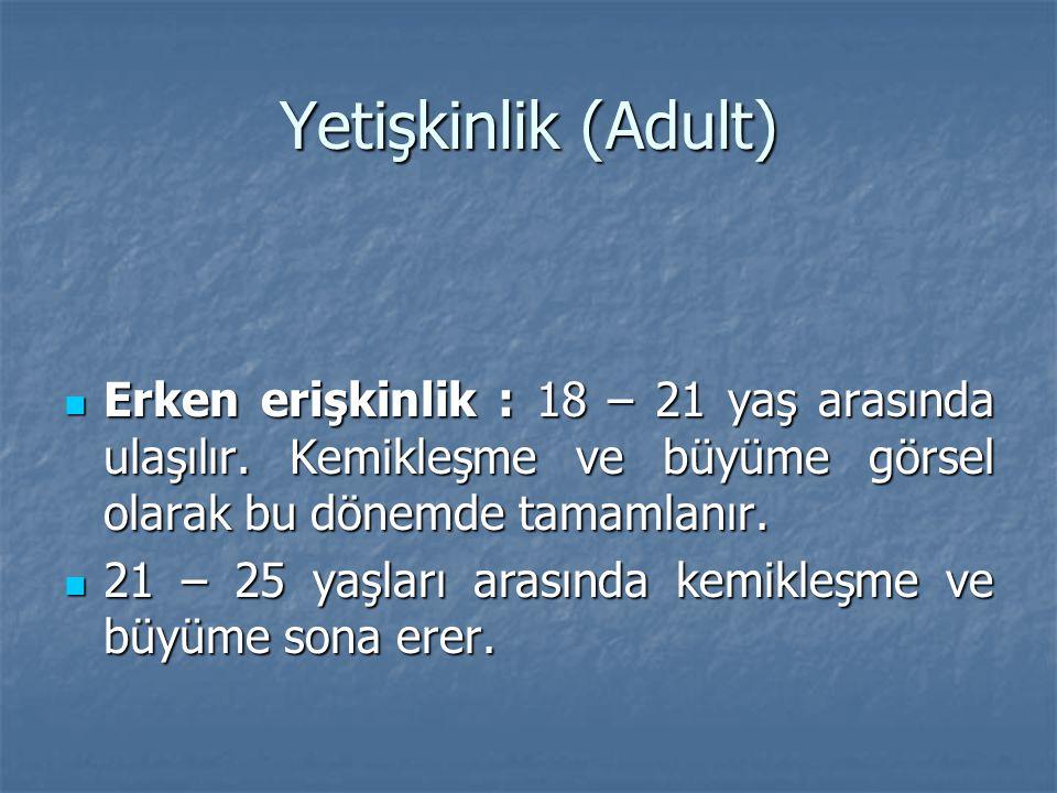 Yetişkinlik (Adult) Erken erişkinlik : 18 – 21 yaş arasında ulaşılır. Kemikleşme ve büyüme görsel olarak bu dönemde tamamlanır. Erken erişkinlik : 18