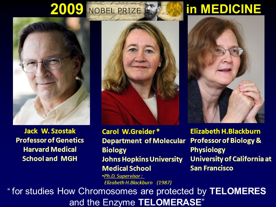 Jack W. Szostak Professor of Genetics Harvard Medical School and MGH Carol W.Greider * Department of Molecular Biology Johns Hopkins University Medica