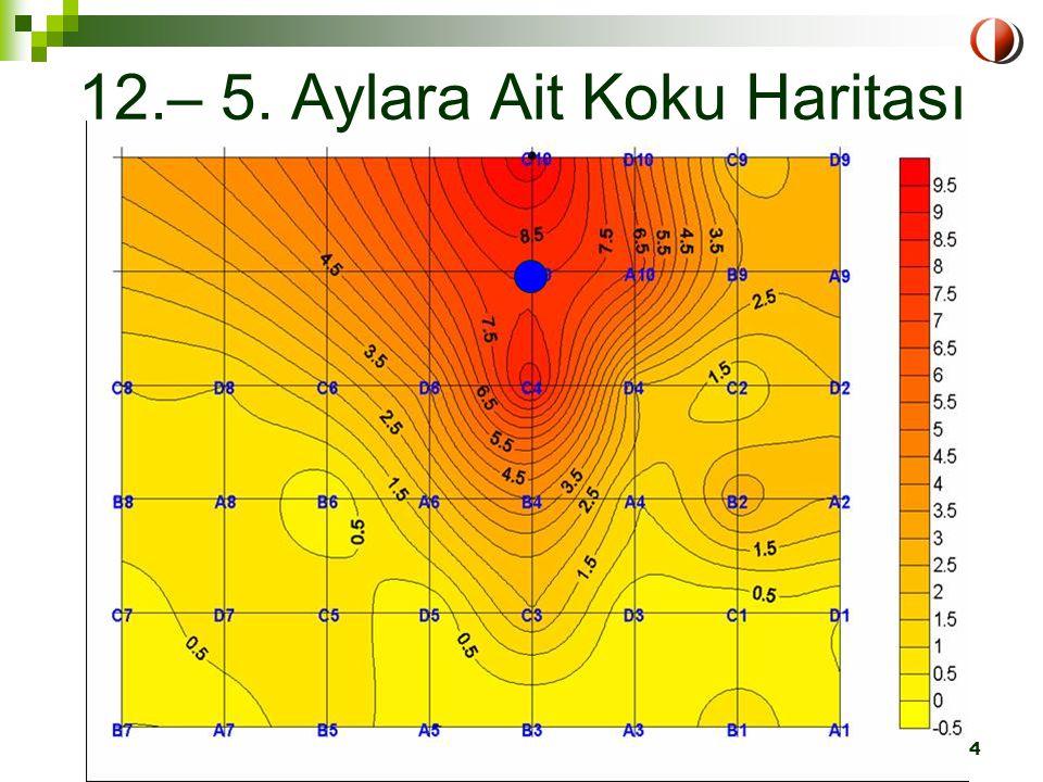 LIFE Projesi-Eğitim Semineri ODTÜ, 1-2 Nisan 2004 Ankara24 12.– 5. Aylara Ait Koku Haritası