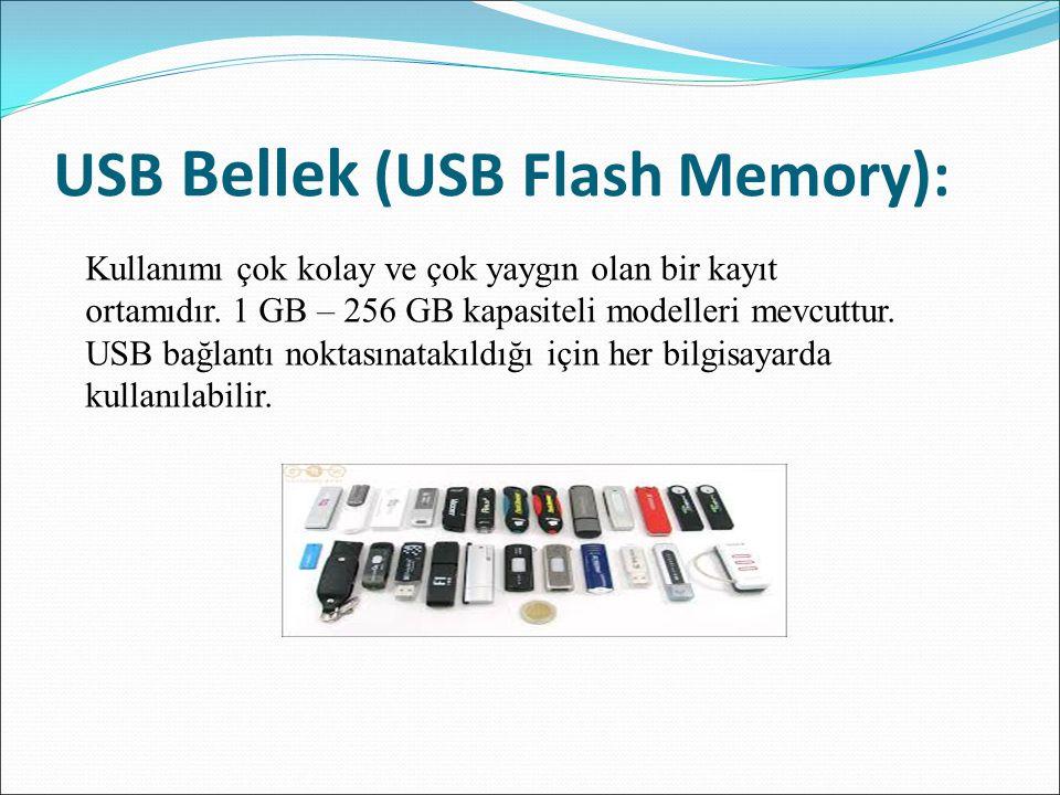 USB Bellek (USB Flash Memory): Kullanımı çok kolay ve çok yaygın olan bir kayıt ortamıdır. 1 GB – 256 GB kapasiteli modelleri mevcuttur. USB bağlantı